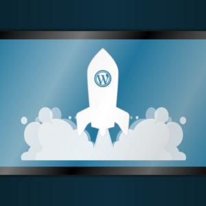 Customize meu Site WordPress